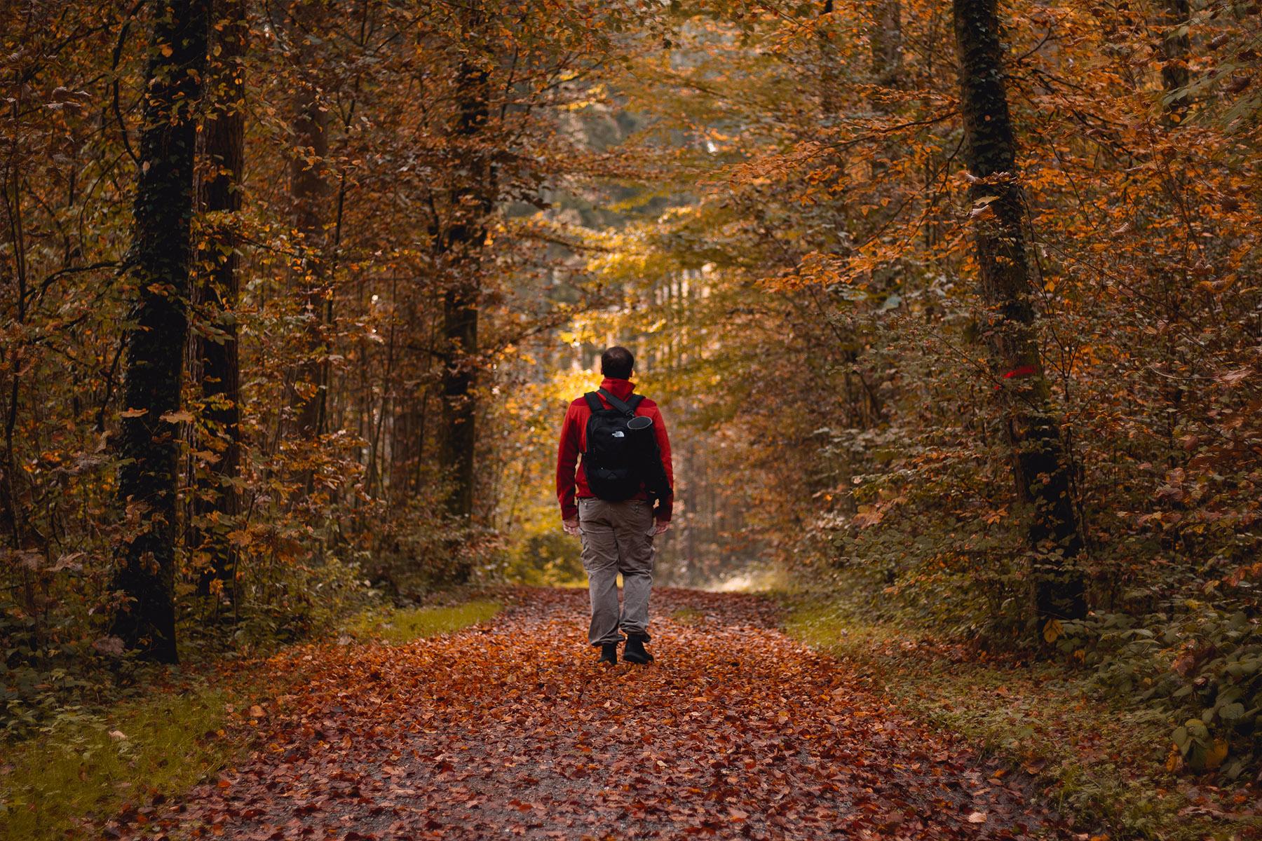 Centrering av man i höstskog