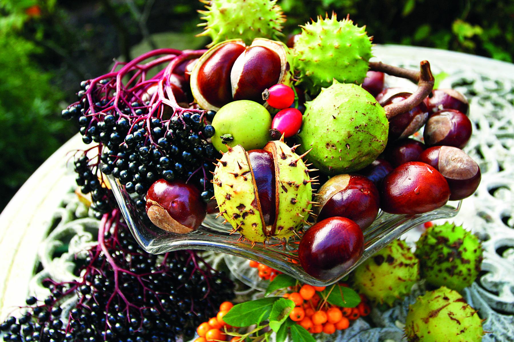 Ett fat med höstens olika frukter