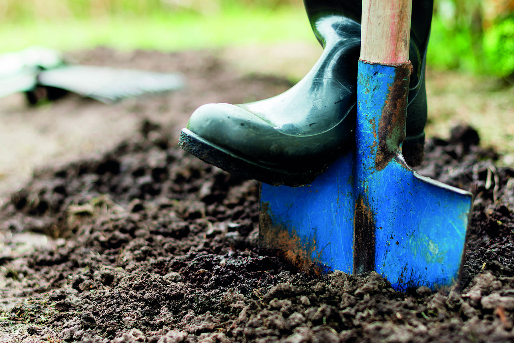 En stövelbeklädd fot som trampar ner en spade i jorden
