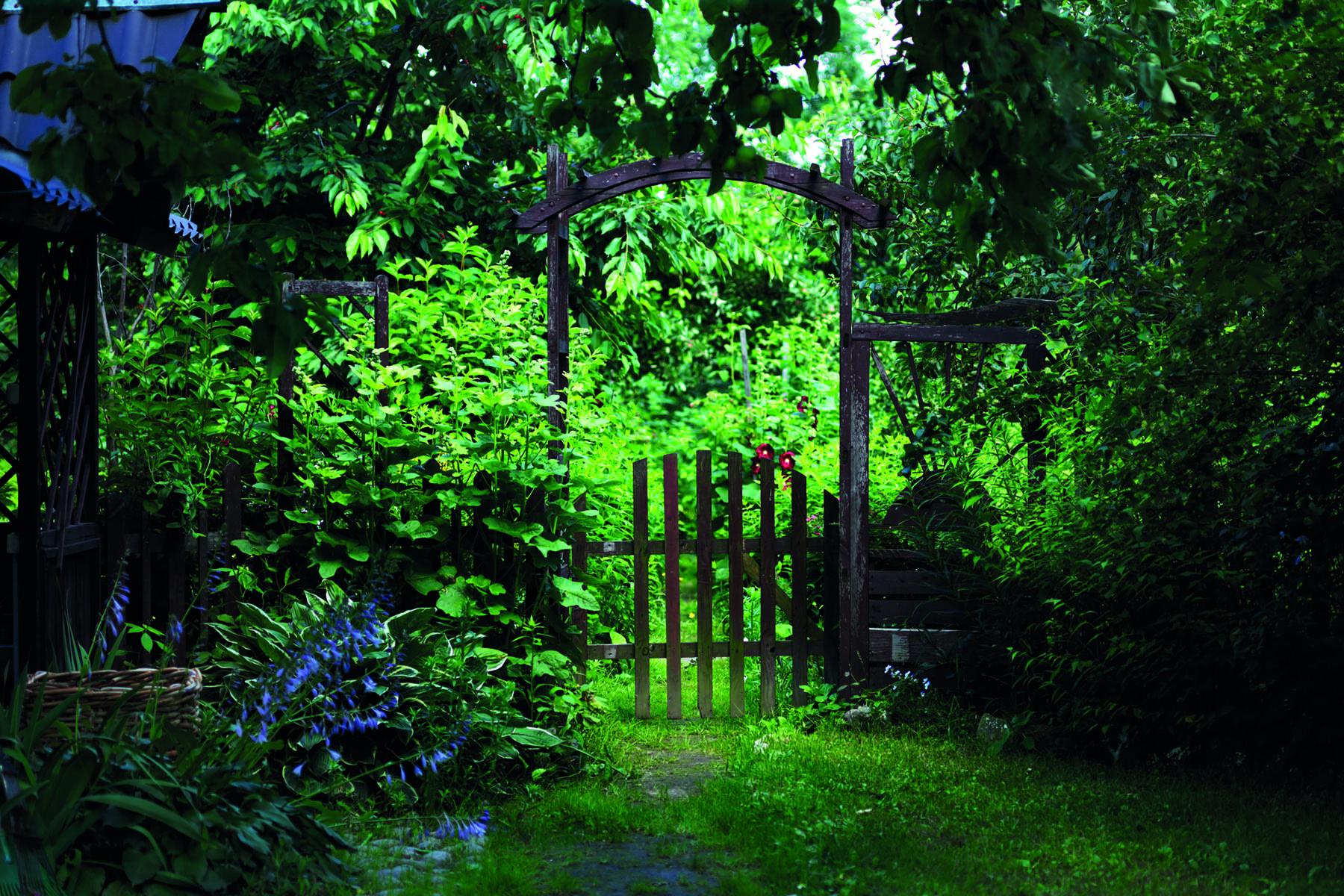 En trädgårdsgrind