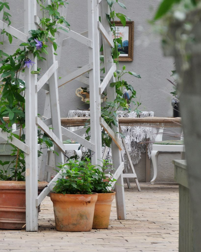 Orangeriet Sofiero slott